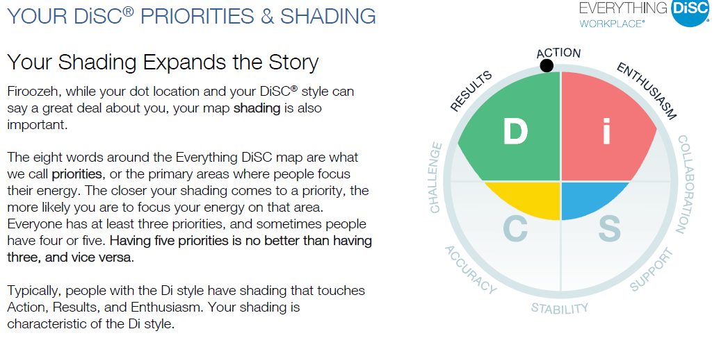 DiSC Workplace Assessment